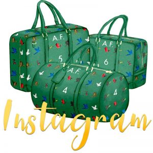 Instagram-with-Birds-of-Feathers-Bags-2